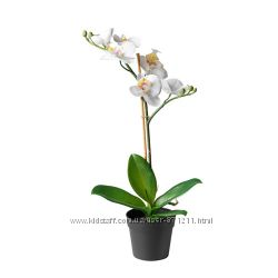 Искусственное растение в горшке ФЕЙКА FEJKA Икеа Ikeа 002. 859. 08 В наличи