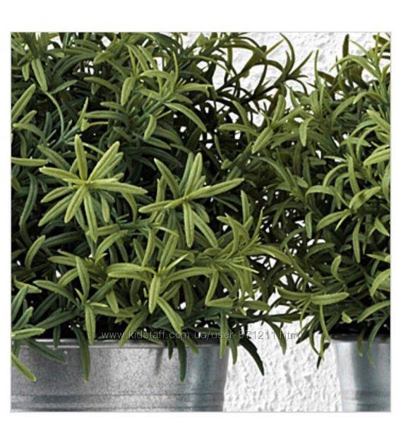 Искусственное растение, розмарин Fejka Фейка Икеа IKEA 903. 821. 13