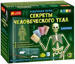 Научная игра Анатомия. Секреты человеческого тела, Ранок, 12115017Р