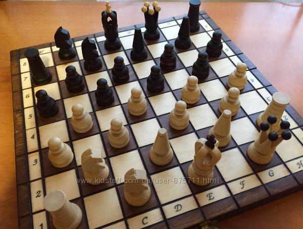 Шахматы, шашки. Игровой набор, настольная игра