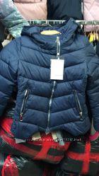 стильные демисезонные куртки. новинки 2016. наличие