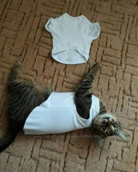 Печать на футболках и майках для собак и котов