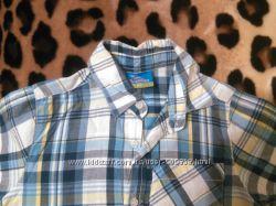 Шикарная рубашечка фирмы Topolino