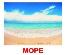 Карточки Домана 2019 года по специальной цене. В наличии весь ассортимент