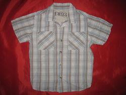 Рубашки для мальчика 2-3 года 92-98 см коттон