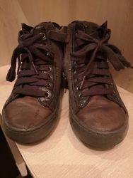 Ботинки хайтопы Geox Kalispera