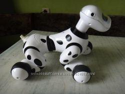 Собака - робот зуммер