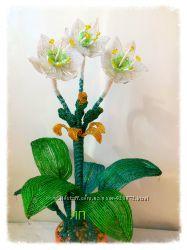 Амазонская лилия или Эухарис из бисера