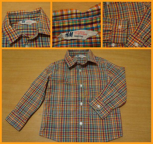 Рубашка H&M, Topolino 2-3 года