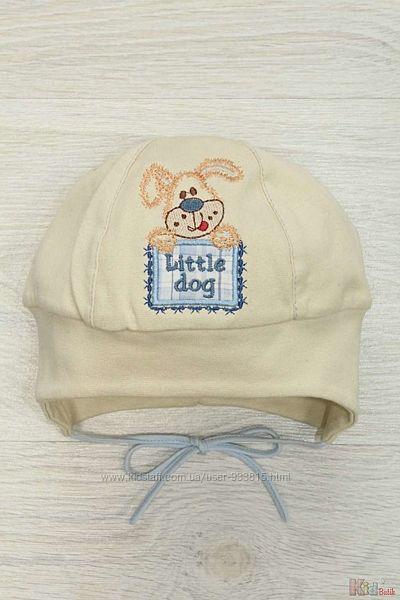 Шапка для мальчика Little dog Pupill
