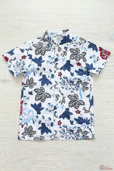 Рубашка для мальчика с коротким рукавом Puledro