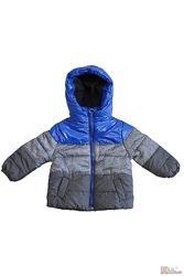 Куртка серая с ярко-синим элементом Midimod