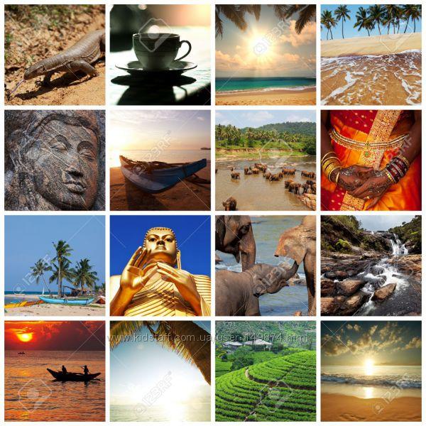 Шри Ланка для ценителей релакса от VIVANTA