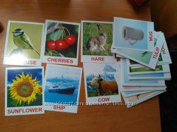 Карточки Домана на англ. языке