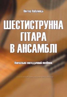 Шестиструнна гітара в ансамблі Лабунець В. М.