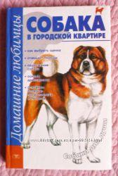 Собака в городской квартире. Автор А. Маслаков