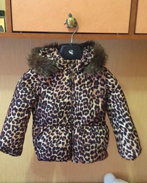 Курточки Next, Gap, жилетка Gymbore, курточка -пуховик Chicco