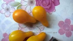 Семена желтых китайских помидоров