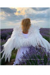 Крылья ангела купить