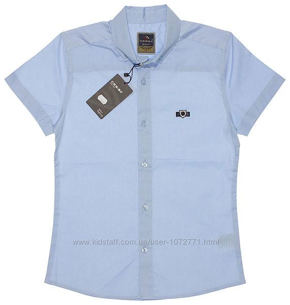 Рубашка для мальчика Cegisa голубая 7611