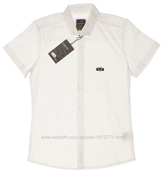 Рубашка для мальчика Cegisa белая 7612