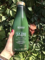 АКЦИЯ Шампунь для жирной кожи головы с экстрактом чайного дерева  BEAVER