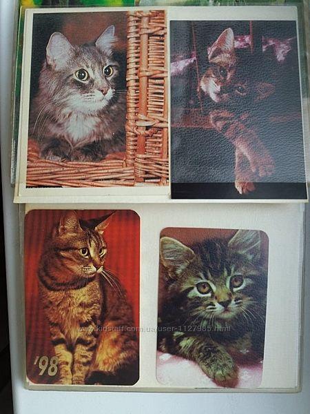 Календарики советские много коты породы котов котята