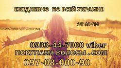 покупка волос Костополь ежедневно Салон Красоты от 40см