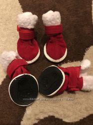Обувочка вашему домашнему любимцу