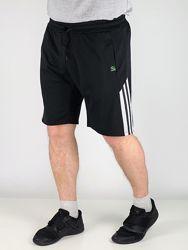 Мужские шорты  SPORT лампас. Шорты на лето