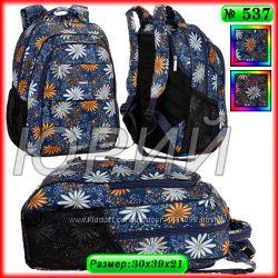 Школьный рюкзак Dolly 537.