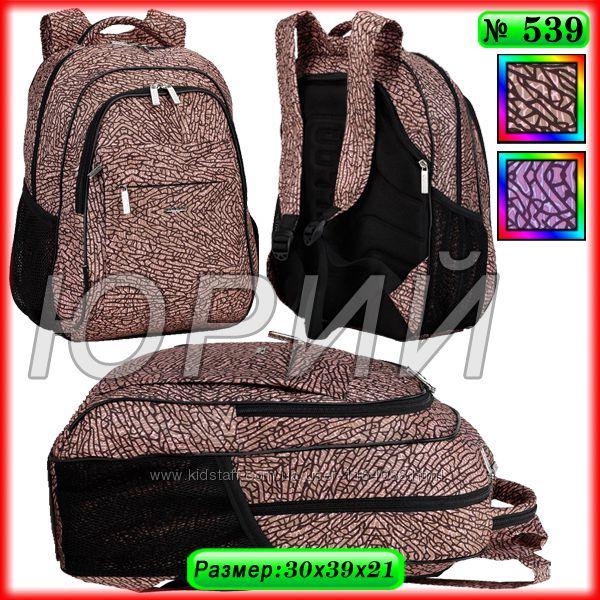 Школьный рюкзак Dolly 539.