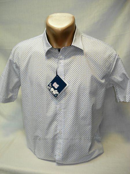 Шведка мужская  Enisse белая с мелким рисунком разм. S, M, XL