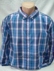 Рубашка мужская  Glo StORi голубая и розовая клетка3XL, 4XL, 5XL, 6XL