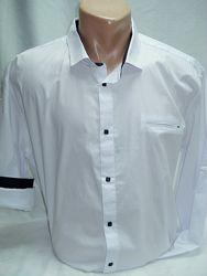 Рубашка мужская  белая с cиней отделкой 3ХL-52, 4XL, 5XL56, 6XL58