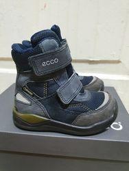Зимние сапоги ботинки Ecco р.23 сост. отлич. есть еще р.25
