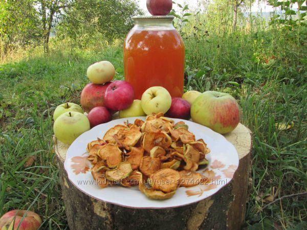 Сок яблочный домашний Закарпатский