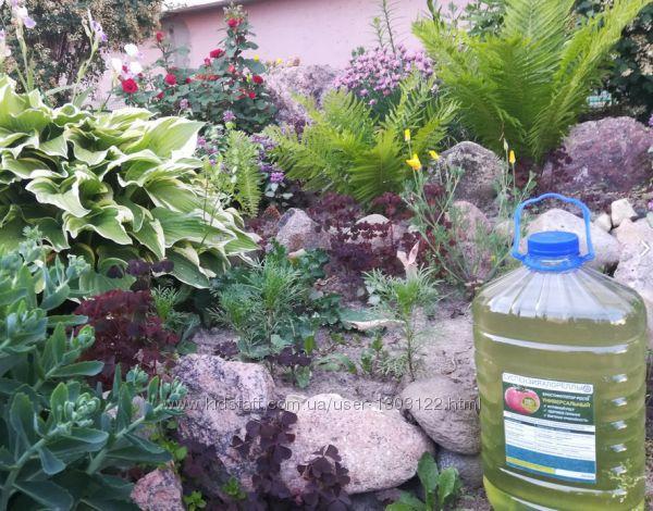 Культуральная среда хлореллы для растениеводства. Удобрение для растений