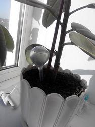 Автоматическая кормушка для полива комнатных растений