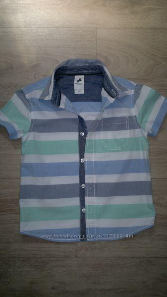 Рубашка Palomino для мальчика 104 см