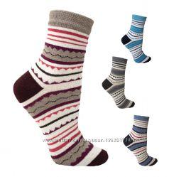 Женские яркие демисезонные носки от житомирского производителя