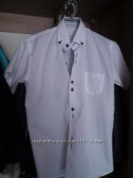 Рубашки Vels