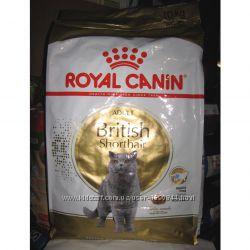 Royal Canin Роял Канин British Shorthair 10кг