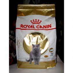 British Shorthair для кошек британской породы Роял канин Royal  4 кг