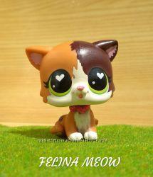 Lps, Felina Meow, cat. Hasbro, littlest pet shop.