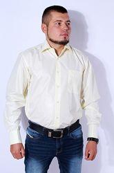 Рубашка мужская светло-желтая kongres, р. 39-42 турция.