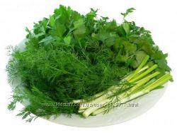 сухая зелень , приправа , сухой лук , петрушка и укроп