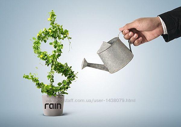Простой и надежный заработок Rain International