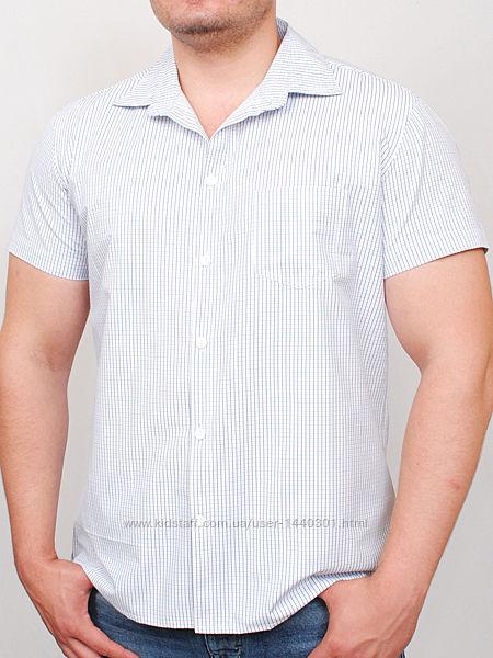 Рубашка DORTMUND мелкая клетка