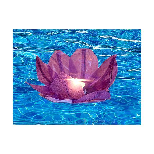Водные фонарики Плавающие лилии
